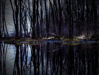 Česká příroda jako oáza klidu. Kde nám bude dopřán odpočinek?