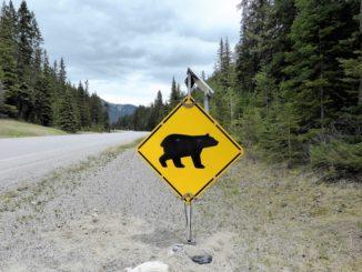 Zajímavosti o Kanadě, o nichž jste možná neměli ani tušení